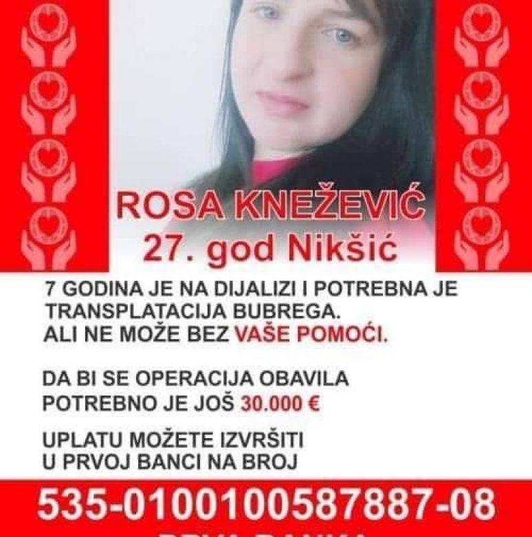 Rosa Knezevic 2