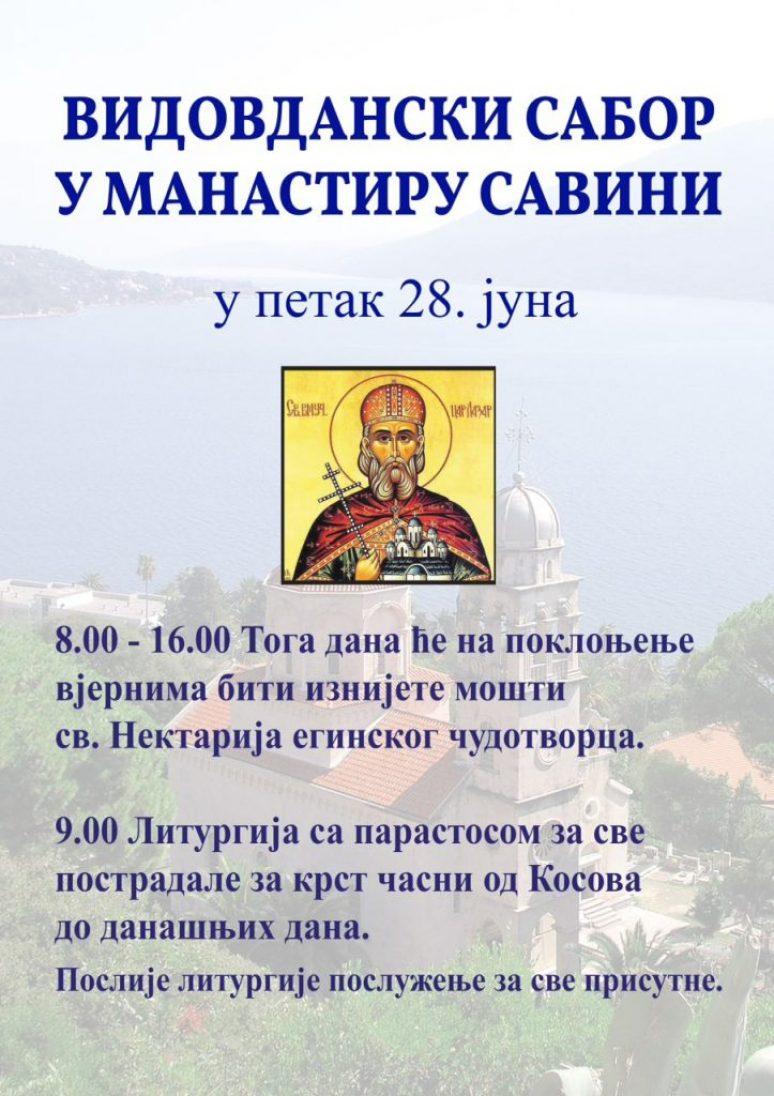 Видовдан Савина
