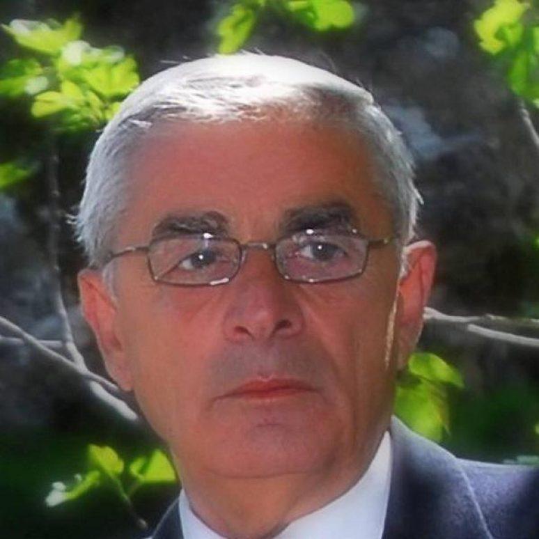 Књижевник Веселин Ракчевић