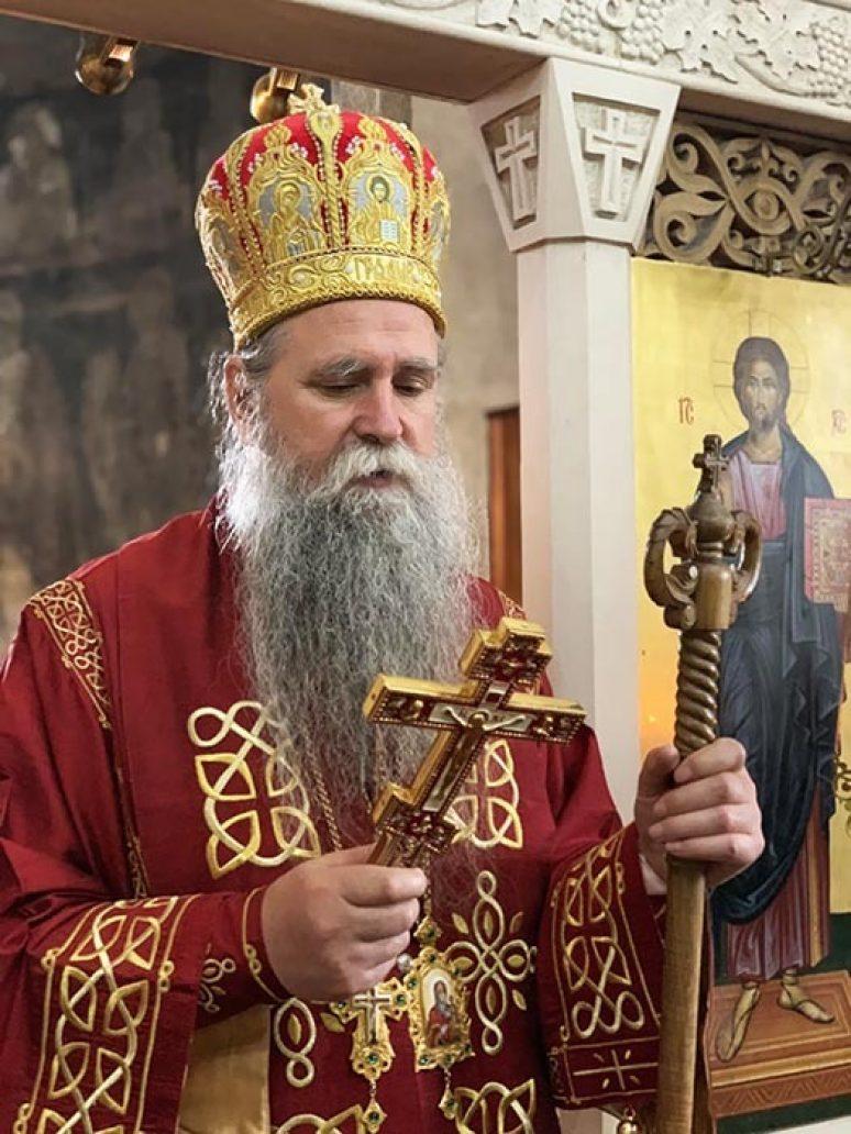 Владика Јоаникије Ступови