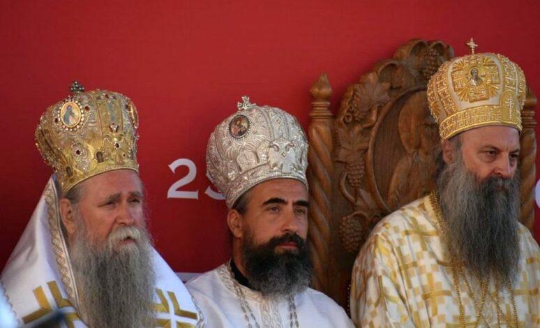 Patrijarh Porfirije, Mitropolit Joanikije I Vladika Metodije